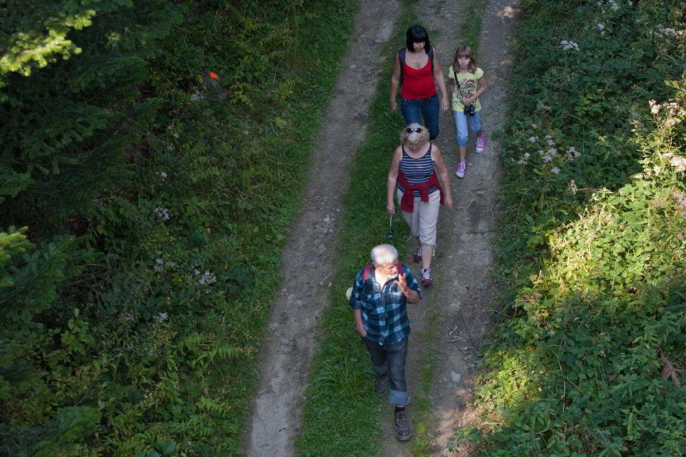 Gorczański Park Narodowy – perełka przyrodnicza w sercu Gorców